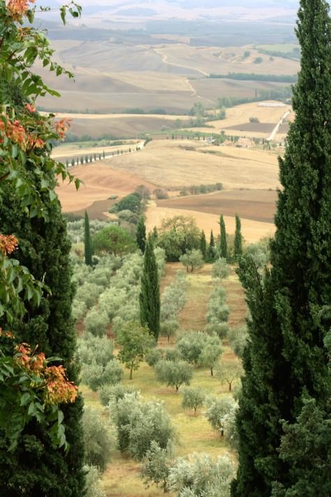 40 minutes from Bacciana