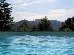 From pool to Montone