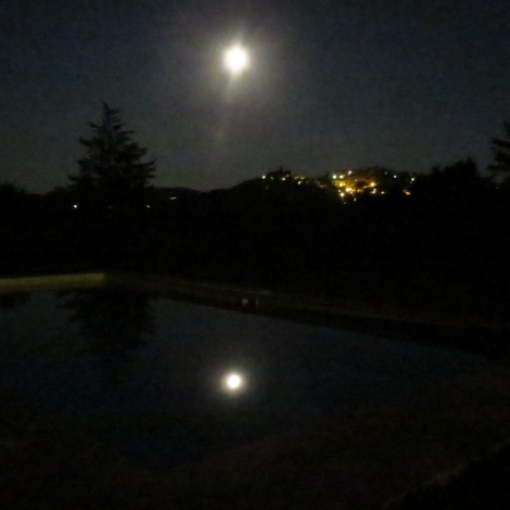 Pool by moonlight