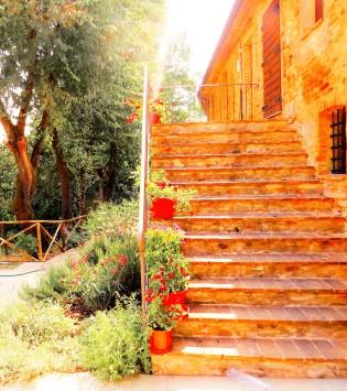 Sun on steps
