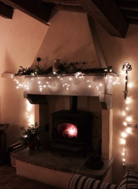 Winter in the sitting room (2)