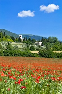 Assisi, town in Umbria, province Perugia, Italy