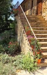 Steps with geraniums